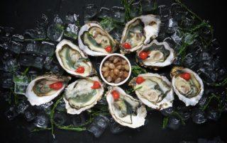 Wellness & Kulinarisches an Bord – Frische Austern