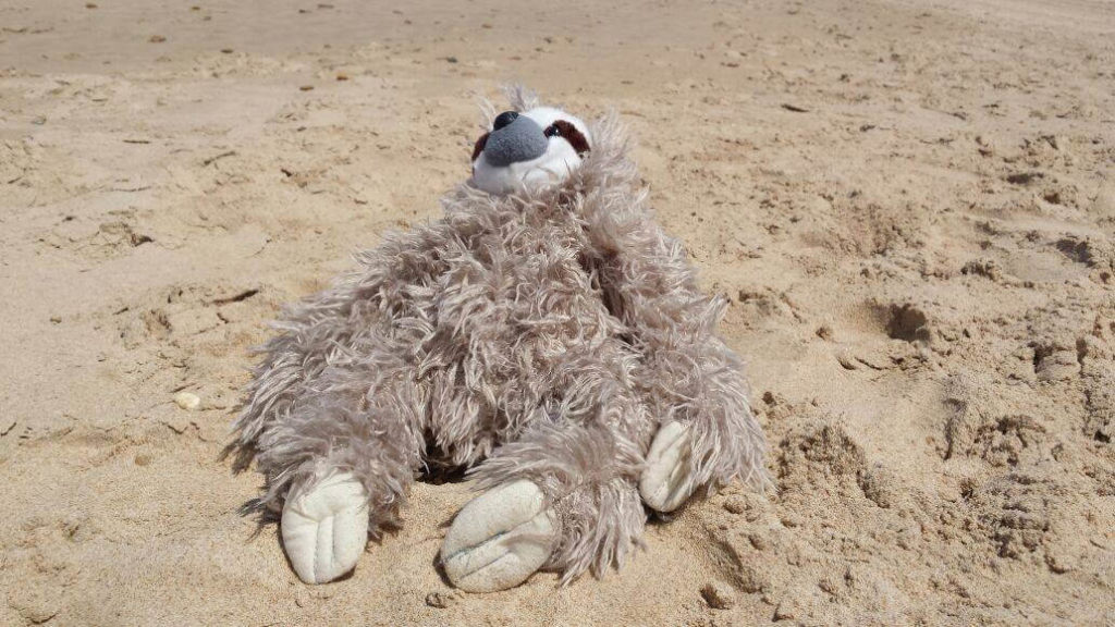 Kreuzfahrtberater Fred am Strand