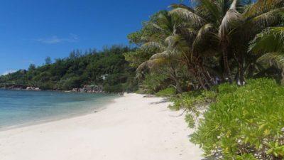 Kreuzfahrtberater Fred: Traumstrand auf Seychellen