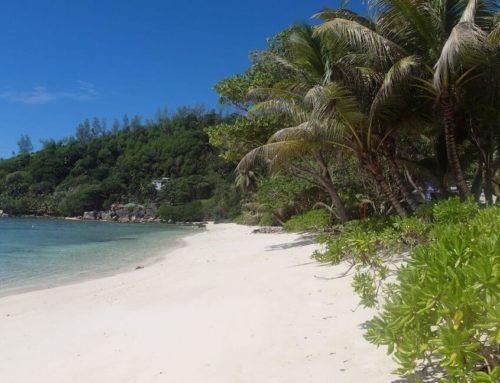 Fred auf den Seychellen – Teil 1