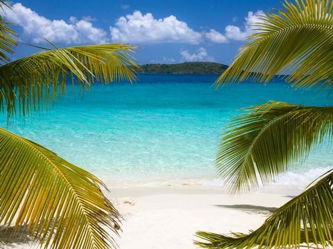 Traumhafte Sonne der Karibik Angebot